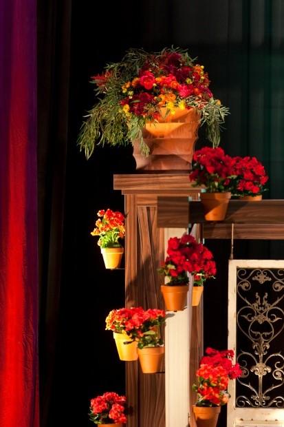 półki z kwiatami